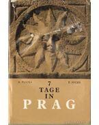 7 Tage in Prag - Plicka, Karel, Poche, Emanuel