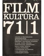 Filmkultúra 71/1 - Sallay Gergely (szerk.)