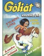 Góliát kalandjai 14. (A világító lovas; A gumibalta; A medvevadászat; Góliát játékai) - Sequence