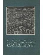 A Miskolci Herman Ottó múzeum Közleményei 18 - Ujváry Zoltán