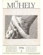 Műhely 1996. XIX. évfolyam 3. szám - Villányi László