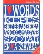 Képes brit és amerikai angol-magyar módszertani tematikus szótár - Szendrő Borbála