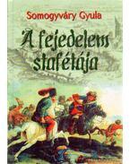 A fejedelem stafétája - Somogyváry Gyula