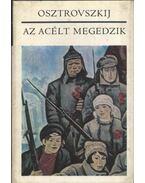 Az acélt megedzik - Osztrovszkij, Alekszandr Nyikolajevics