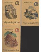Nagy várakozások kora I-II-III kötet - Pausztovszkij, Konsztantyin