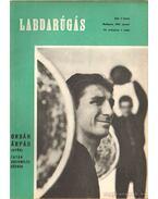 Labdarúgás 1965. XI. évf. (teljes) - Hoffer József