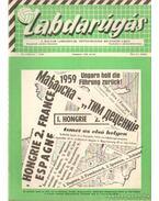 Labdarúgás 1960. VI. évf. (teljes) - Hoffer József