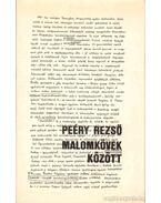 Malomkövek között - Peéry Rezső