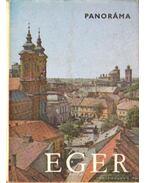Eger (1976) - Szombathy Viktor, Kovács Béla, Hevesy Sándor, Dr. Zétényi Endre, Bottlik Mihály, Dr. Manga János