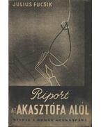 Riport az akasztófa alól - Julius Fucsík