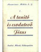 A tanító és csodatevő Jézus V. - Avancinus Miklós