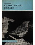 A fülemüle és a csalogány (Nachtigall und Sprosser) - Hilprecht, Alfred