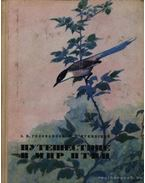 Utazás a madarak világába (Путешествие в мир птиц) - Golovanova, E. N., Pukinszkij, Ju. B.