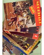 Sportélet 1972. VIII. évfolyam (teljes) - Pető Béla