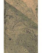 Világtörténelem középtanodai használatra I. kötet: Ókor - Dr. Mangold Lajos