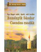 Csendes csodák - Reményik Sándor