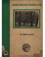 Az erdő élete - Papp László