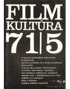 Filmkultúra 71/5 - Sallay Gergely (szerk.)