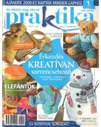 Praktika 2009. január 1. szám - Boda Ildikó (főszerk.)