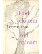 Köd előttem köd utánam - Lesznai Anna