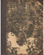 A leányvári boszorkány - Lovik Károly