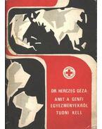 Amit a Genfi egyezményről tudni kell - Herczeg Géza