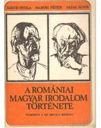 A romániai magyar irodalom története - Szász János, Dávid Gyula, Marosi Péter