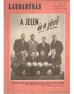 Labdarúgás 1961. VII. évf. (hiányos) - Hoffer József