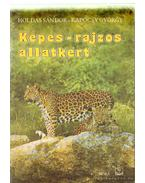 Képes-rajzos állatkert - Kapocsy György, Holdas Sándor