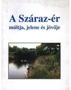 A Száraz-ér - Réthy Zsigmond