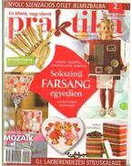 Praktika 2009. február 2. szám - Boda Ildikó (főszerk.)