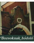 Bozsoknak hódoló - Károlyi Amy, Devecseri Gábor, Gosztonyi János