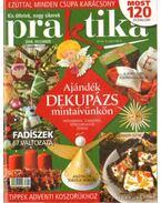 Praktika 2008. december - Boda Ildikó (főszerk.)