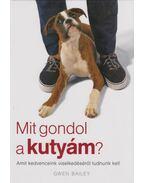 Mit gondol a kutyám? - Bailey, Gwen