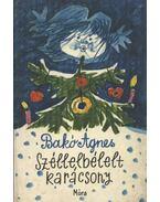Széllelbélelt karácsony - Bakó Ágnes