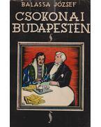 Csokonai Budapesten avagy A mai magyar irodalom (dedikált) - Balassa József