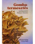 Gombatermesztés - Balázs Sándor