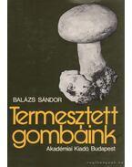 Termesztett gombáink - Balázs Sándor