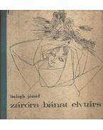 Záróra bánat elvtárs - Balogh József
