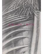 Bőrünkön a betűk (dedikált) - Banos János