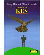 The Play of Kes - Barry Hines, Allan Stronach
