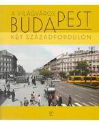 A ''világváros'' Budapest két századfordulón - Barta Györgyi, Keresztély Krisztina, Sipos András