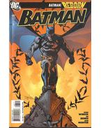 Batman 687. - Winick, Judd, Benes, Ed
