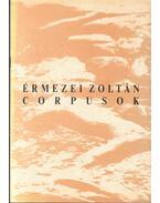 Corpusok - Feltárás: Érmezei Zoltán és Rauschenberger János kiállítása - Beke László, Szőke Annamária