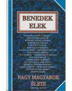 Nagy magyarok élete VIII-XIII. kötet - Benedek Elek