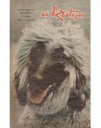 A Kutya 1970/3. - Bíró András