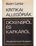 Kritikai allegóriák Dickensről és Kafkáról - Bizám Lenke