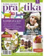 Praktika 2013/1 január - Boda Ildikó (főszerk.)