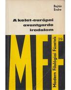 A kelet-európai avantgarde irodalom - Bojtár Endre