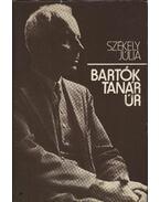 Bartók tanár úr - Székely Júlia